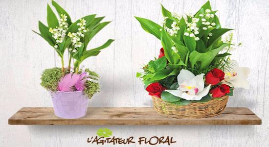 Code promo Agitateur Floral